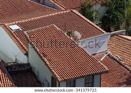 Background ornament terracotta red tiles on roof in the Mediterranean