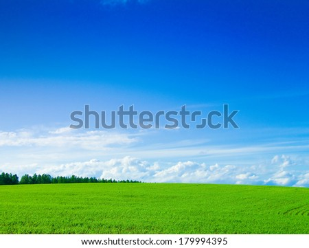Background Outdoor Field  - stock photo