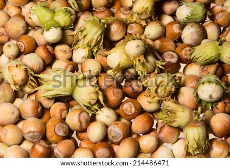 Background pattern formed by the hazel nuts  - stock photo