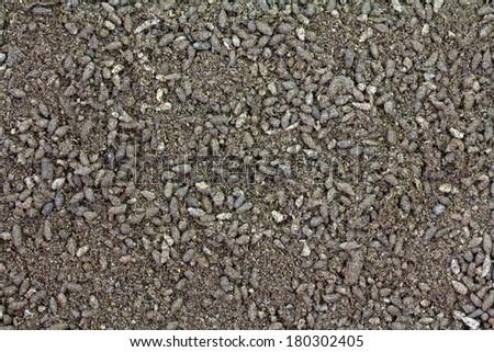Background photo of Bat Guano Fertilizer  - stock photo