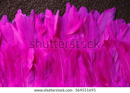 background pink feather - stock photo