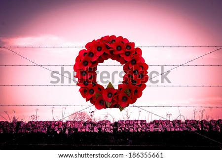 Background poppy WW1 barbed wire and sandbags world war - stock photo