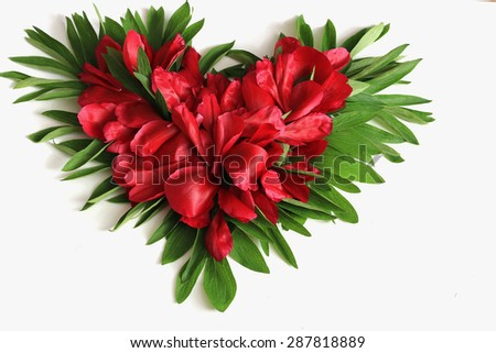 Background red flower petals