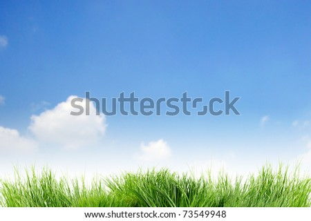 background  sky cloudy  and grass - stock photo