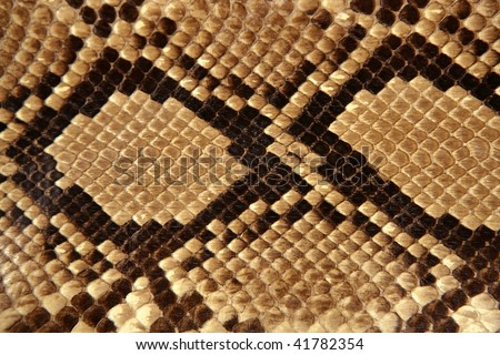 Background snake skin pattern brown and beige color - stock photo