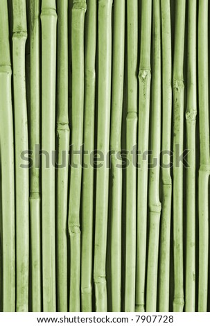 Background structure from stalks of a bamboo