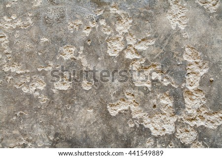 background surface cement at floor