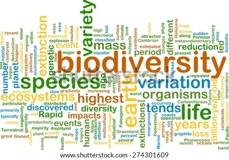 Background text pattern concept wordcloud illustration of biodiversity