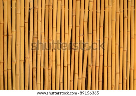 Background Texture Of A Bamboo Fence In The Tropics - stock photo