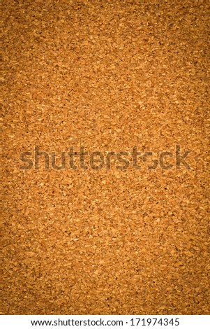 Background texture of Cork board closeup.