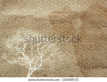 background texture of old paper with white tree graphic on the left corner - stock photo