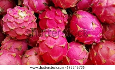 Pink Dragon Fruit Flower