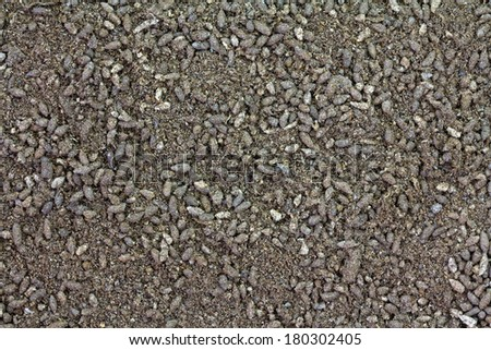 Background texture photo of Bat poop Guano fertilizer. It has high concentration of Nitrogen. - stock photo