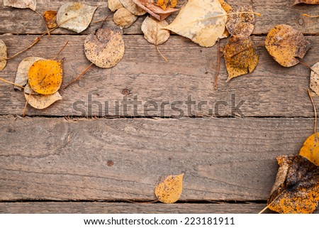 Background texture with old wooden table and yellow autumnal leaves - stock photo