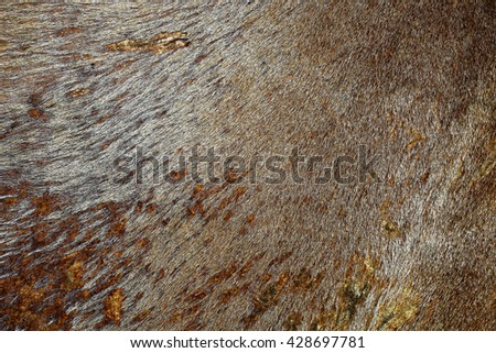 Background textured leather - stock photo