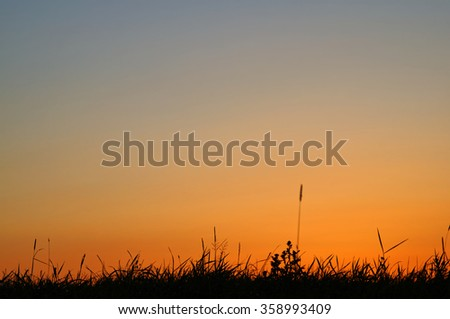 Background with a silhouette of grass and a bright orange sky after sunset. - stock photo