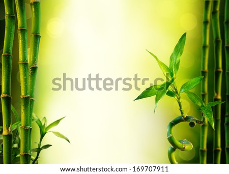 background with bamboo for spa treatment - olive green  - stock photo