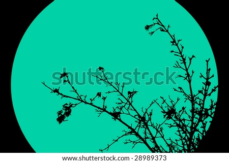 background with branches
