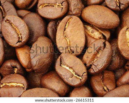 Background with brown coffee beans