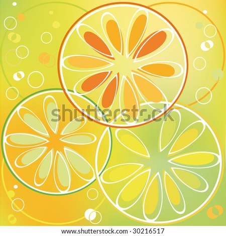 Background with citrus slice in bubbly drink - stock photo