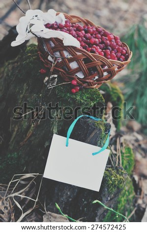 background with cranberries in a basket on a stump - stock photo