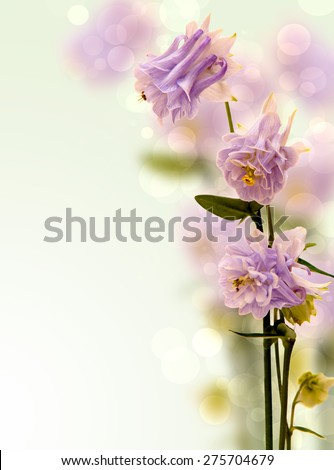 Background with Flowers Bells light purple. - stock photo