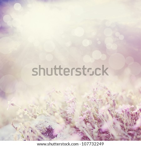 Background with flowers in a beautiful meadow and cloudscape with bokeh lights. - stock photo