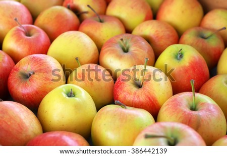 Background with fresh delicious juicy red apples. Delicious colorful sweet-sour apples in the box on the market