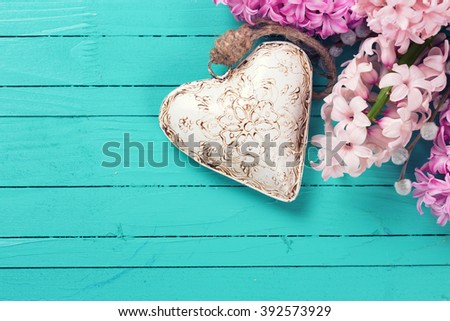 Background with fresh pink hyacinths  and  decorative heart  on green painted wooden planks. Selective focus. Place for text. - stock photo