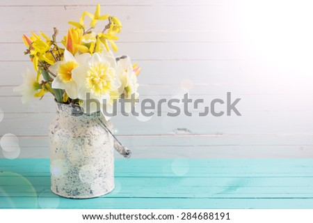 Background with fresh  spring yellow daffodils flowers in ray of light  on turquoise  painted wooden planks against white wall. Selective focus. Place for text.  - stock photo