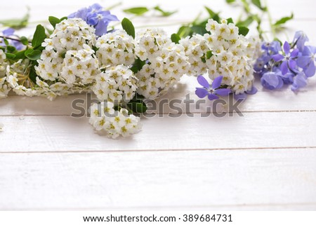 Background with fresh tender blue and white flowers  on white painted wooden planks. Selective focus. Place for text.