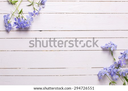 Background with fresh tender blue flowers on white wooden planks. Selective focus. Place for text. - stock photo