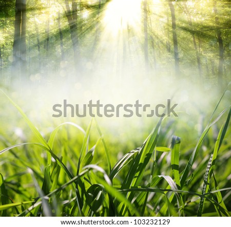background with grass in the meadow - stock photo