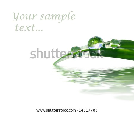 background with green grass - stock photo
