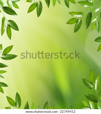 background with green leaf - stock photo