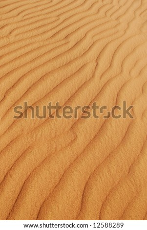 Background with lines in the desert sand