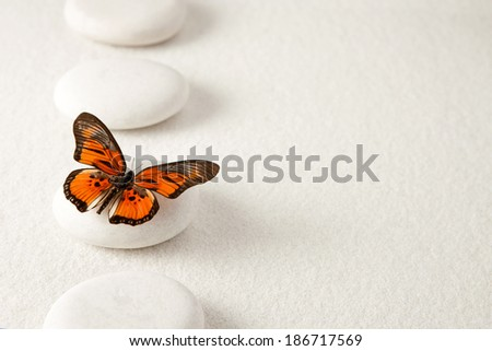 Background with rocks and butterfly - stock photo