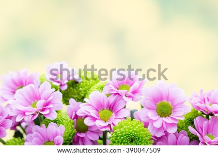 Background with springt flowers. Abstract flowers background. Easter background. - stock photo