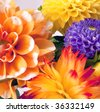 Background with two dahlias - stock photo