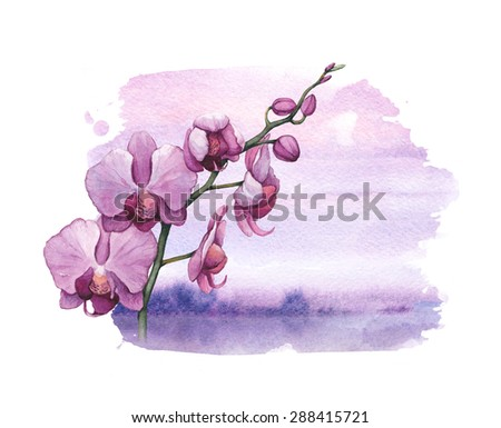 Background with watercolor orchid flowers - stock photo