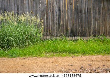Background wooden plank fence and shrub of marsh grass near the footpath - stock photo