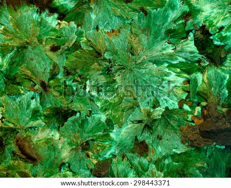 Backgrounds and textures: malachite, surface of beautiful bright green decorative stone, abstract pattern of crystals, cracks, spots and stains, natural background - stock photo