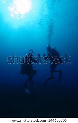 Backlit divers