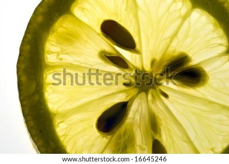backlit lemon slice - stock photo