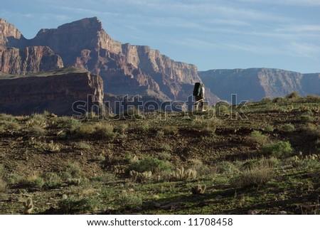 Backpacker, Grand Canyon, Arizona - stock photo