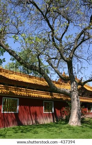 Backyard of a Chinese House - stock photo