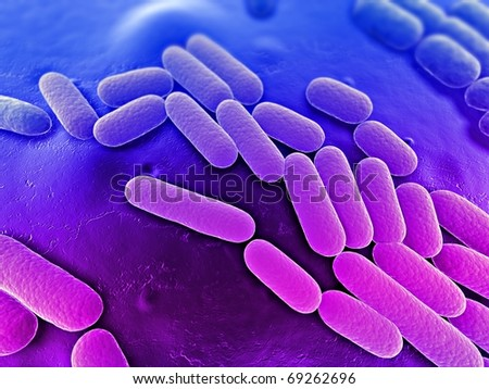 bacteria illustration - stock photo