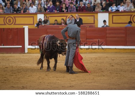 BADAJOZ, SPAIN, APRIL 12: The spanish torero Miguel Angel Perera performing a bullring, on April 12, 2014 in Badajoz, Spain