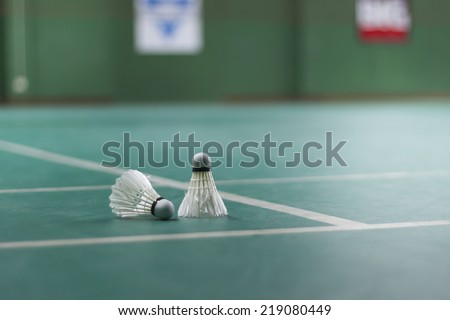 Badminton - badminton courts with two shuttlecocks - stock photo