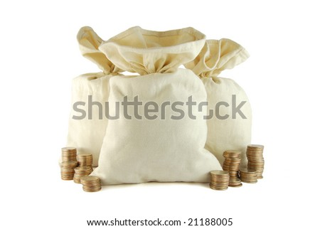 Bag of money with coins on the white background - stock photo